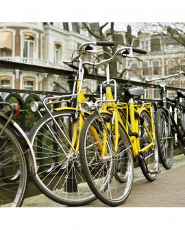 Amarelas | Amsterdam - Holanda (AHH)
