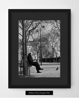 Uma tarde, um livro e um charuto  | Paris - França (PFCV)