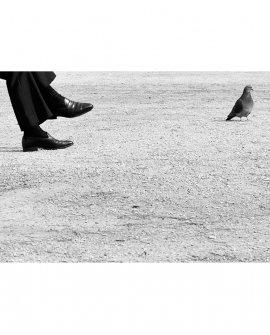 O mesmo chão | Paris - França (PFCH)
