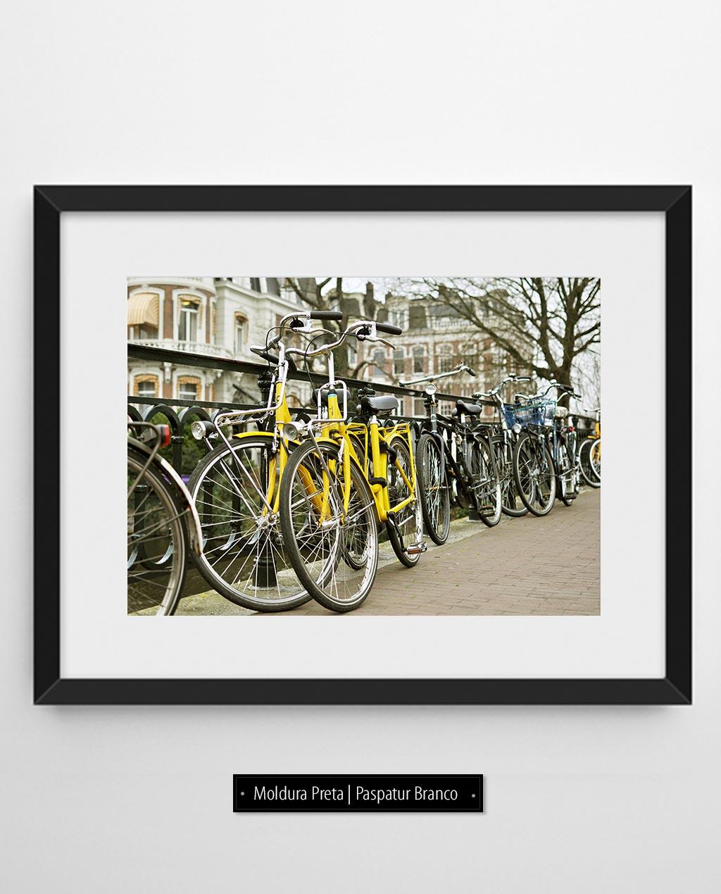 Amarelas   Amsterdam - Holanda (AHCH)