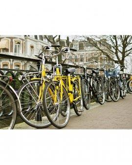 Amarelas | Amsterdam - Holanda (AHCH)