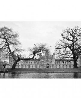 Chauffeur | Cambridge - Inglaterra (CICH)