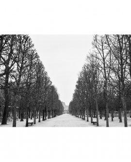 Tarde Fria | Paris - França (PFCH)