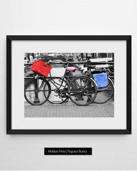 Vermelho, rosa e azul  | Amsterdam - Holanda (AHCH)